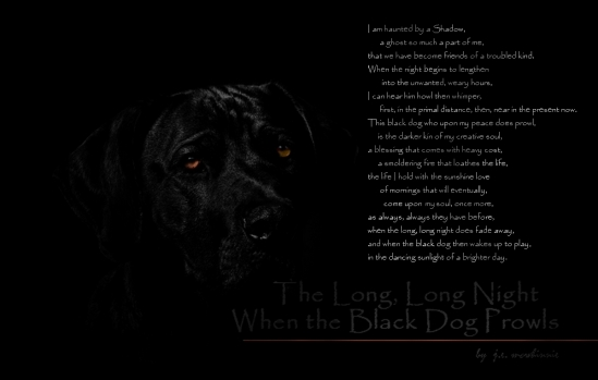 whentheblackdogprowls